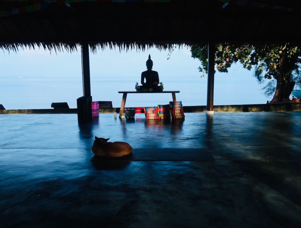 7 types of guided meditation